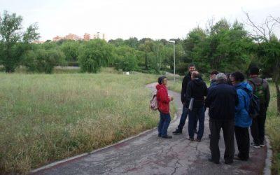 Proyecto de huerto urbano comunitario y ecológico